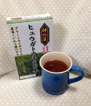 ヒュウガトウキのお茶