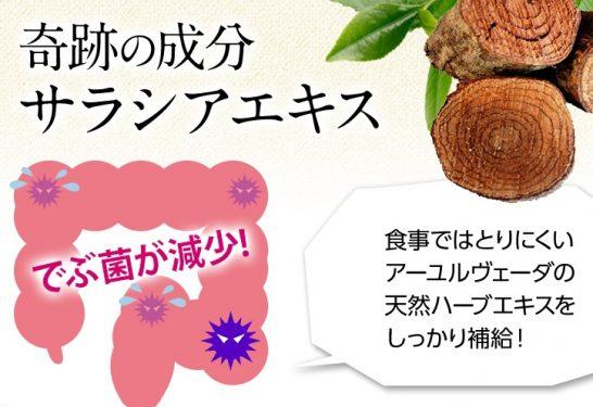 ラクビ(LAKUBI)は痩せない!?口コミで効果が話題の腸内フローラを整えるダイエットサプリ『ラクビ』の本当の効果とは!